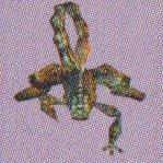 ScorpC