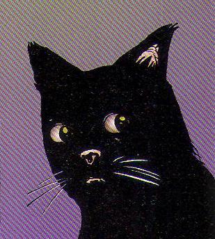 File:The cat.jpg