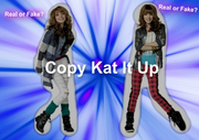 Copy-Kat-It-Up-shake-it-up-29147776-600-422
