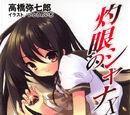 Shakugan no Shana Light Novel Volume 10