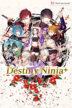 Destiny Ninja 2+