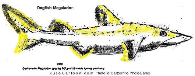 File:Dogfish.jpg