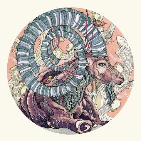 File:Nubian ibex by calmality-d8gygxk.jpg