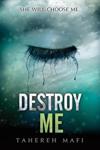 File:Destroy Me.png