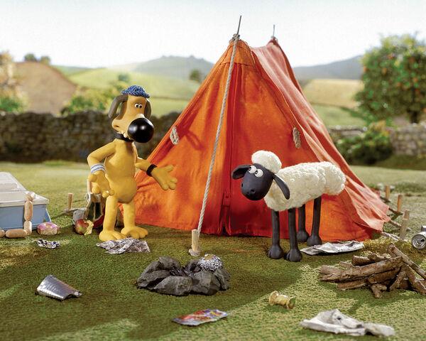File:Shaun and Bitzer explore messy camp.jpg