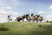 Shaun the Sheep Still-01