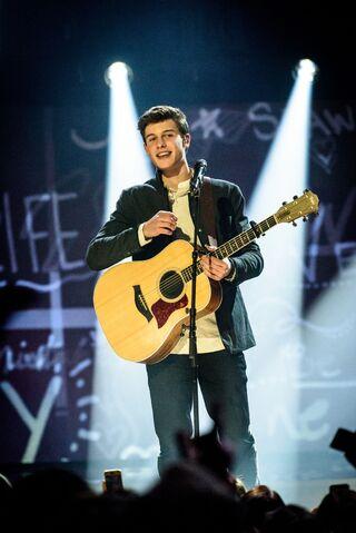 File:2015-Juno-Awards-Show8.jpg