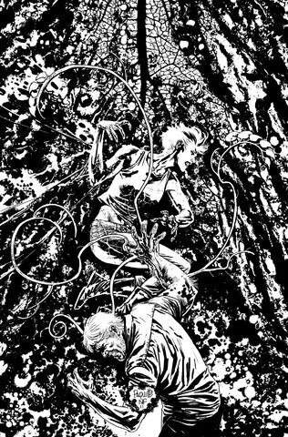 File:Swamp Thing Vol 5-6 Cover-2 Teaser.jpg