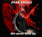 Dark Angels never give up