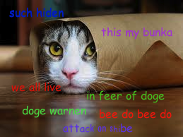 Attack on doge