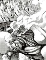 Reiner is defeated