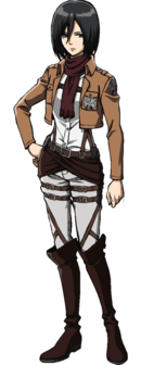 Mikasa's appearance.png