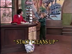 StacyCleansUptitlecard