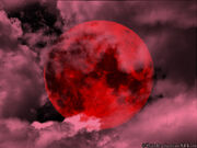 The Red Moon by OsakuDraculia