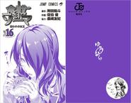 Volume 16 Book Cover