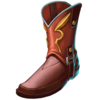 Boots Rider's Boots