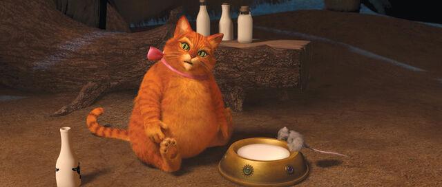 File:Overweight Puss.jpg