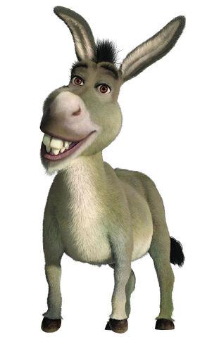 File:Donkey1.jpg