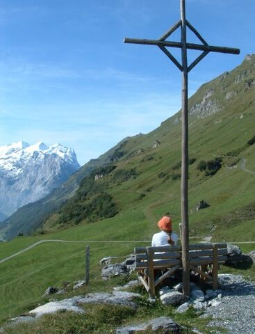 קובץ:Swiss.jpg