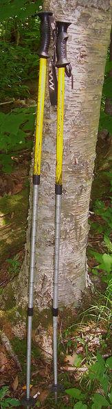 163px-Trekking poles