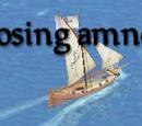 Amnesty Ship