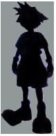 File:Shadow sora.png