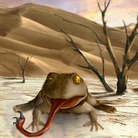 Hook Toad
