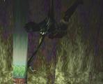 The Hanged Scratcher002