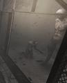 Thumbnail for version as of 08:26, November 21, 2014