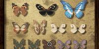Specimen Collection Puzzle