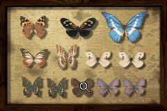 Butterflypuzzle