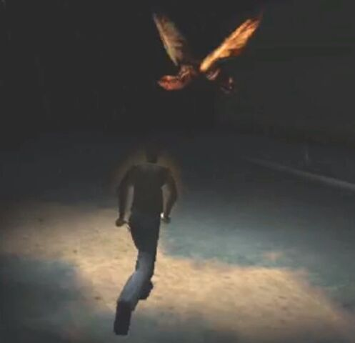 File:Night Flutter and Harry.jpg