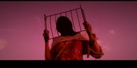 Prisoner (Broken Remnants)