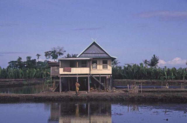 File:Wetland-house-lahan-basah-rumah-sulawesi-indonesia 1152 12777054294-tpfil02aw-14618.jpg