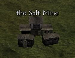 The Salt Mine