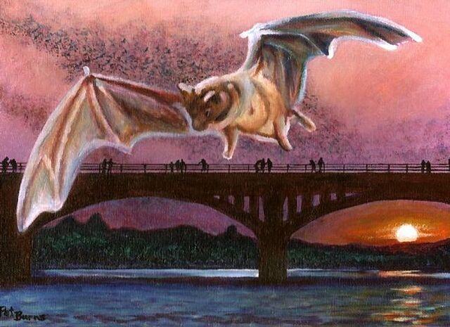 File:Congress-Avenue-Bridge-Bats.jpg