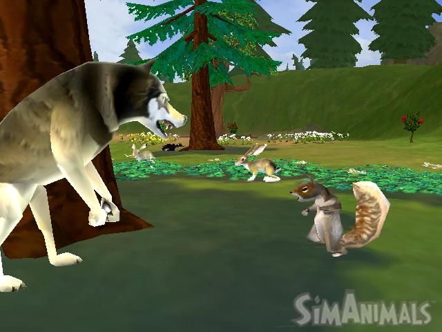 File:197251-wolf squirrel.jpg