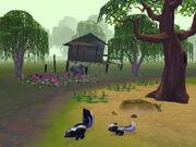 Skunks2 bmp jpgcopy