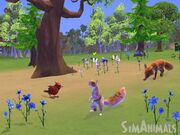 Review wii simanimals02 130409