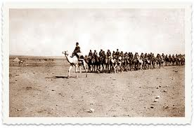 Asir cavalry