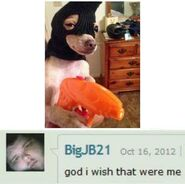 Professionalstreetdoggo
