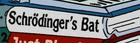 Schrödinger's Bat