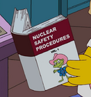Nuclear Safety Procedures Vol. 1