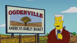 BarleyBasket