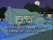 Dog of Death 123