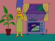 Homerazzi 47