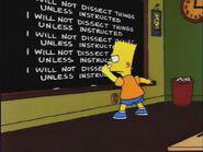 Lisa on Ice Chalkboard Gag
