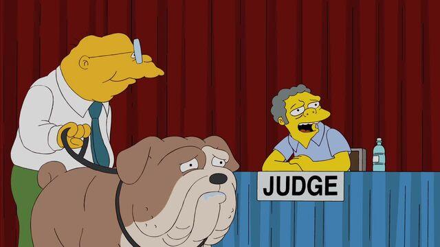 File:Judge Me Tender 48.JPG