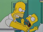 'Round Springfield 27