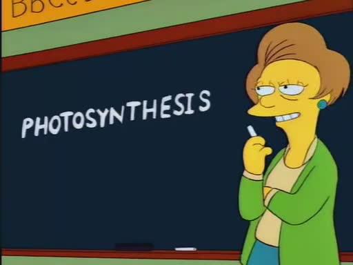 File:The last temptaation of Homer -2015-01-02-11h31m37s118.jpg